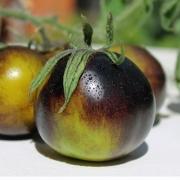deaflora tomaten. Black Bedroom Furniture Sets. Home Design Ideas